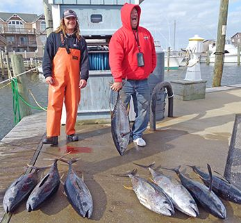 Tuna Duck Sportfishing, Yellowfin Tuna!