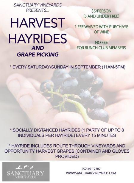 Sanctuary Vineyards, Harvest Hayrides & Grape Picking