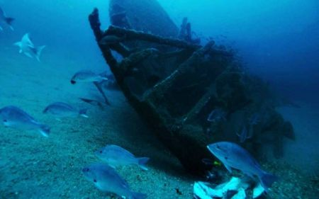 Graveyard of the Atlantic Museum, Sea Dawgs Lecture Series: Shipwreck Photography