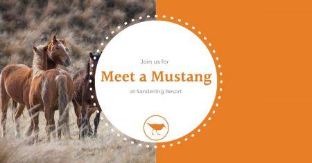Sanderling Resort, Meet a Mustang