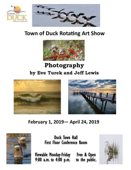 Duck Town Park, Photography by Eve Turek and Jeff Lewis Rotating Art Show