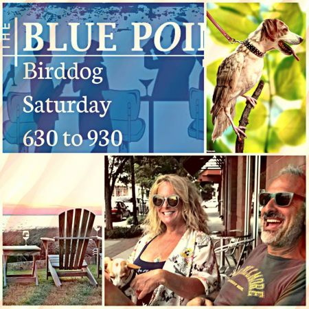 Blue Point, Birddog - Live Music at The BackBar