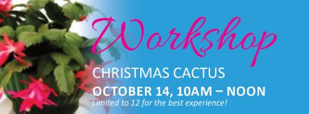 Elizabethan Gardens, Christmas Cactus Workshop