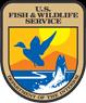 Pea Island National Wildlife Refuge, Friday Bird Walk