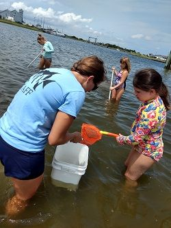 North Carolina Aquarium on Roanoke Island, Jr. Aquatic Adventures Summer Camp