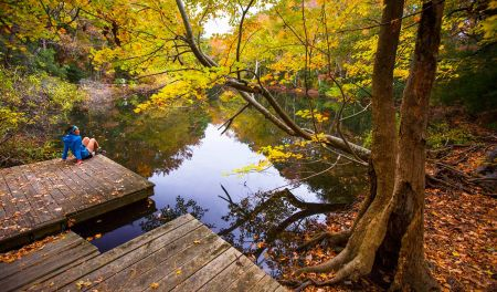 OBX Events, Guided Hike at Nags Head Woods