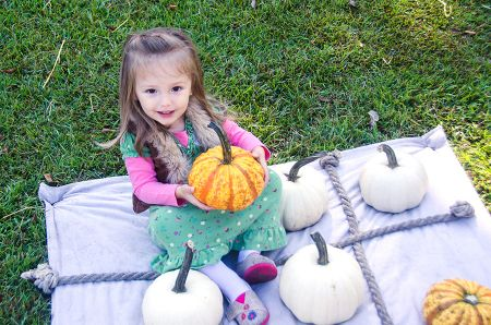 Island Farm, Pumpkin Patch Saturdays