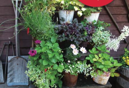 Dare Master Gardener Association, Annual Coastal Gardening Festival 2020 - Postponed until 2022