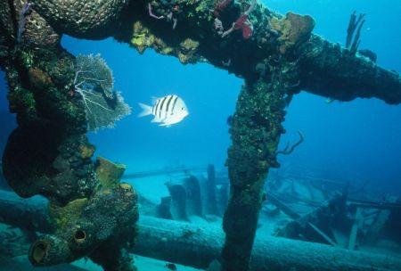Graveyard of the Atlantic Museum, 5th Annual Underwater Heritage Symposium