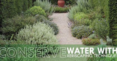 Dare Master Gardener Association, Library Garden Series - Xeriscaping