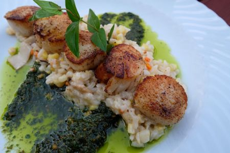 Ocean Boulevard Bistro & Martini Bar, Pan Seared Sea Scallops