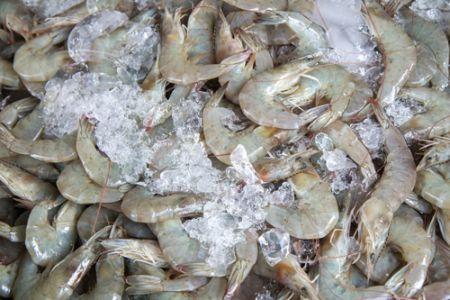Seaside Farm Market Corolla, Shrimp