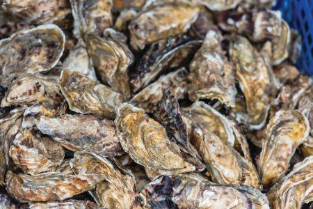Seaside Farm Market Corolla, Oysters