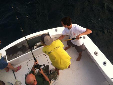 Hitman Sportfishing, Gulfstream Trips with Captain James