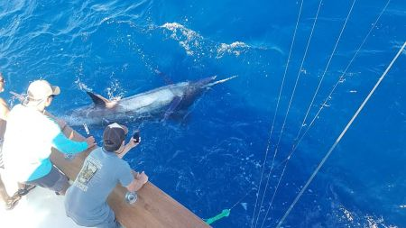 The Hooker, Hooker Sportfishing Charters