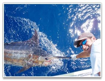 Bite Me Sportfishing Charters, Offshore Fishing with Bite Me Sportfishing