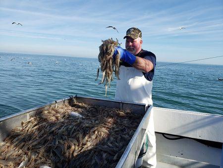 Hallie M Shrimping Charters, Charter a Shrimp Boat