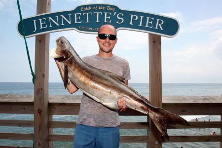 Jennette's Pier, Fish from the OBX's Favorite Pier