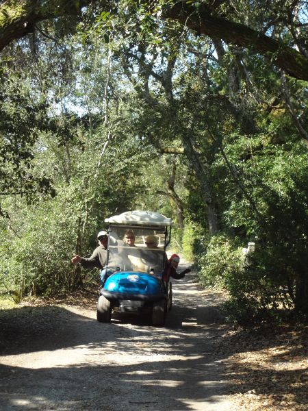 Wheelie Fun Cart Rentals, Explore Ocracoke Island