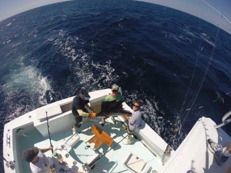 Reliance Hatteras Fishing Charters, Offshore Charter Fishing