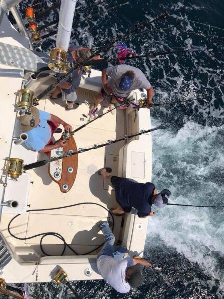 Wanchese Marina, Offshore Charter Fishing
