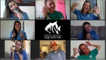 North Carolina Aquarium on Roanoke Island, Virtual Camps