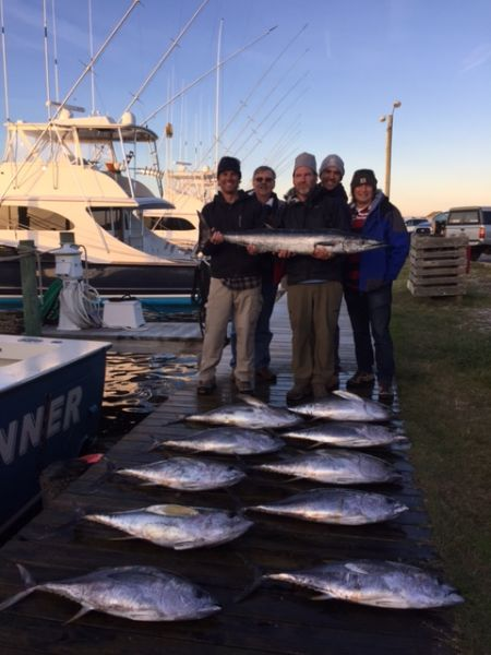Chilly start to a great day of fishing november 25 2015 for Oregon inlet fishing center fishing report