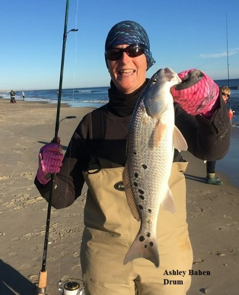 Daily fishing report january 12 2018 tw s bait for Tws bait and tackle fishing report