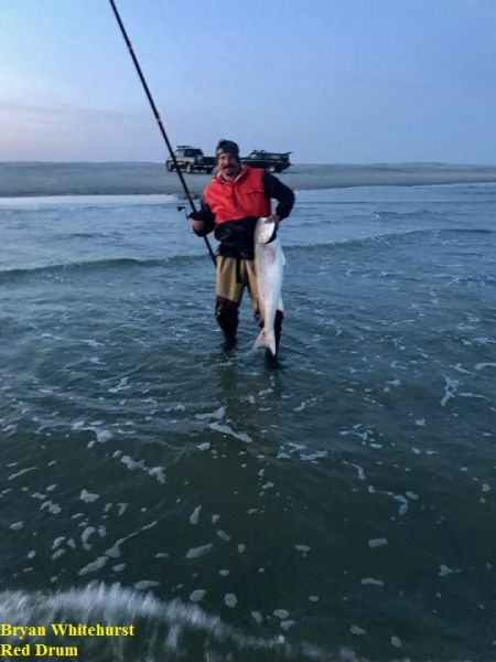 Daily fishing report april 6 2018 tw s bait tackle for Tw s fishing report