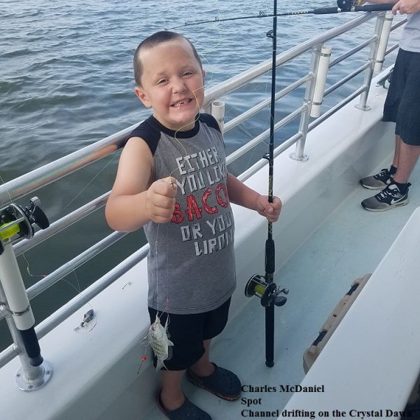 Daily fishing report july 11 2017 tw s bait tackle for Tw s fishing report