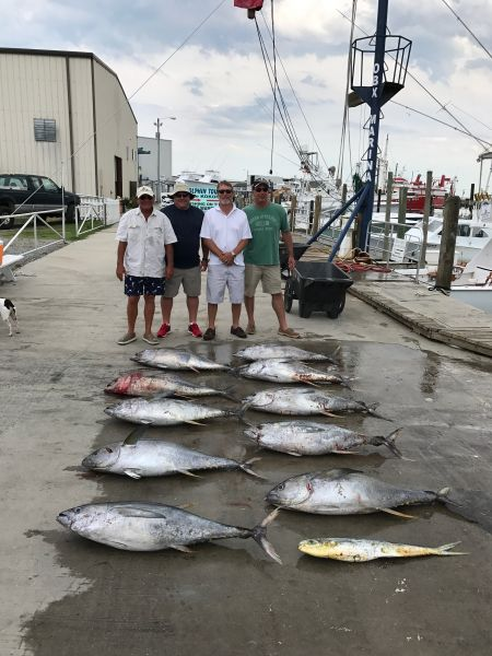 6 28 2017 june 28 2017 obx marina outer banks for Obx fishing report