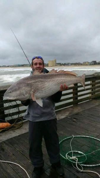 Corolla fishing report november 12 2017 obx bait and for Obx fishing reports