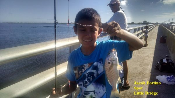 Daily fishing report july 20 2017 tw s bait tackle for Tws bait and tackle fishing report