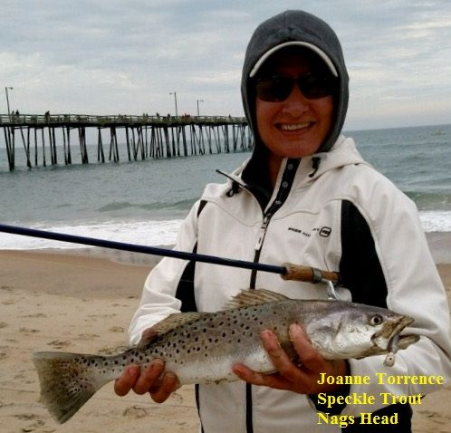 Daily fishing report april 24 2016 tw s bait tackle for Tw s fishing report