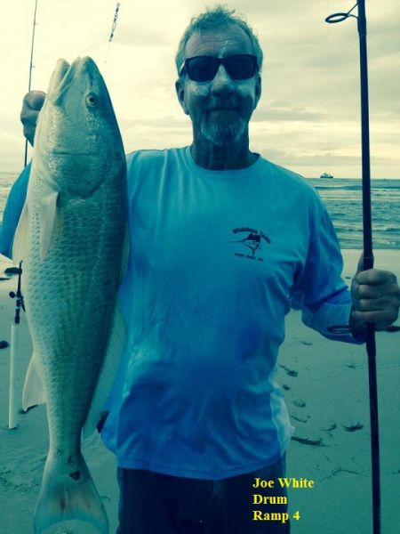 Daily fishing report july 19 2017 tw s bait tackle for Surf fishing outer banks