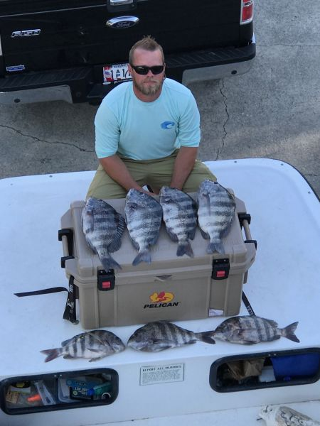 Daily fishing report june 30 2017 tw s bait tackle for Tws bait and tackle fishing report