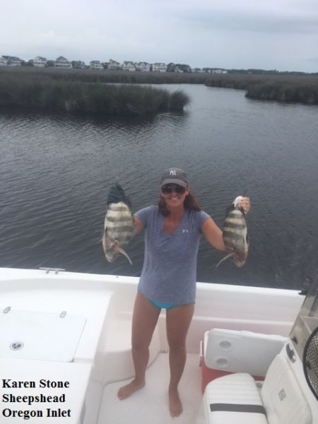 Daily fishing report july 17 2017 tw s bait tackle for Tws bait and tackle fishing report