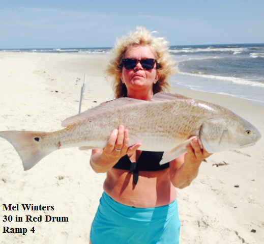 Daily fishing report june 11 2017 tw s bait tackle for Tw s fishing report