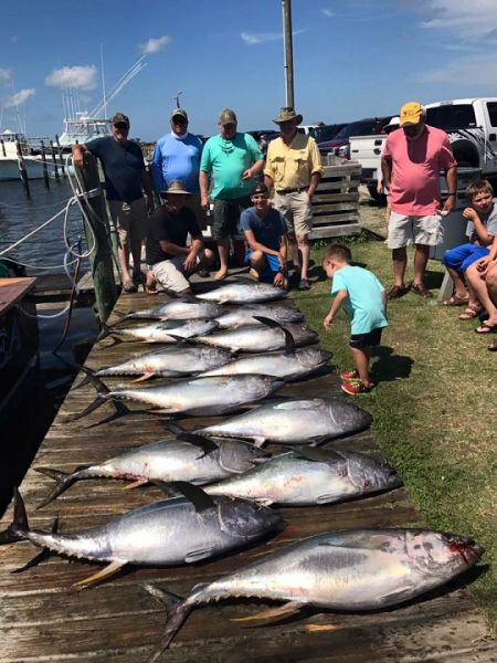 Daily fishing report july 12 2017 tw s bait tackle for Tw s fishing report