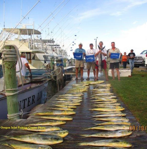 TW's Daily Fishing Report. 2/26/16 | February 26, 2016 ... |Oregon Inlet Rough Water