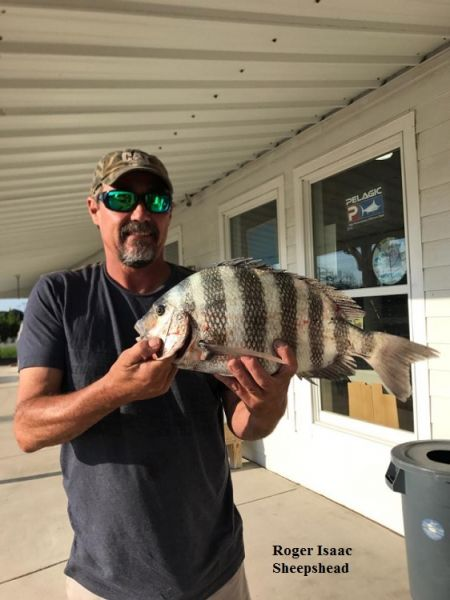 Daily fishing report june 10 2017 tw s bait tackle for Tws bait and tackle fishing report