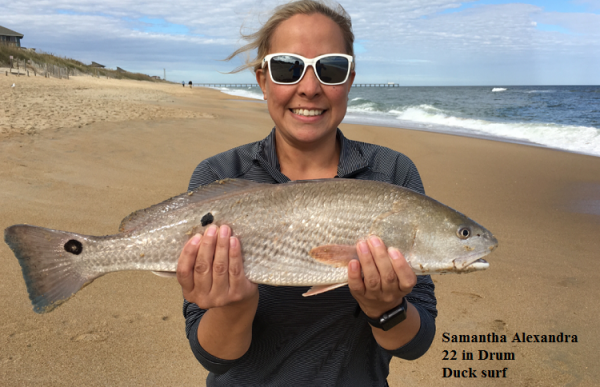 Daily fishing report october 29 2017 tw s bait for Tw s fishing report