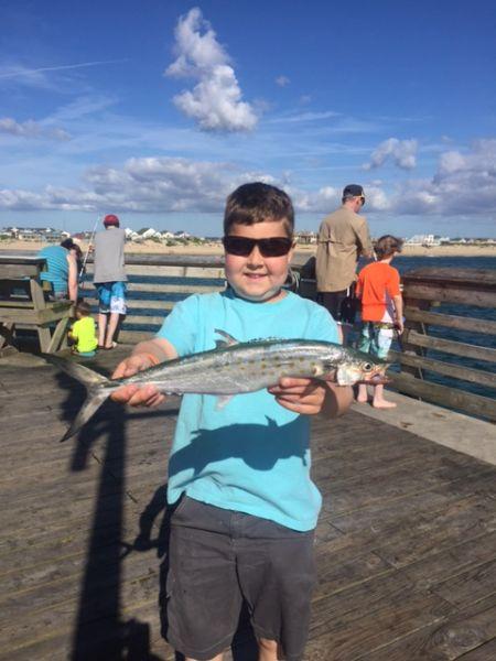 Jennette 39 s pier fishing report june 27 2017 jennette for Jennette s pier fishing report