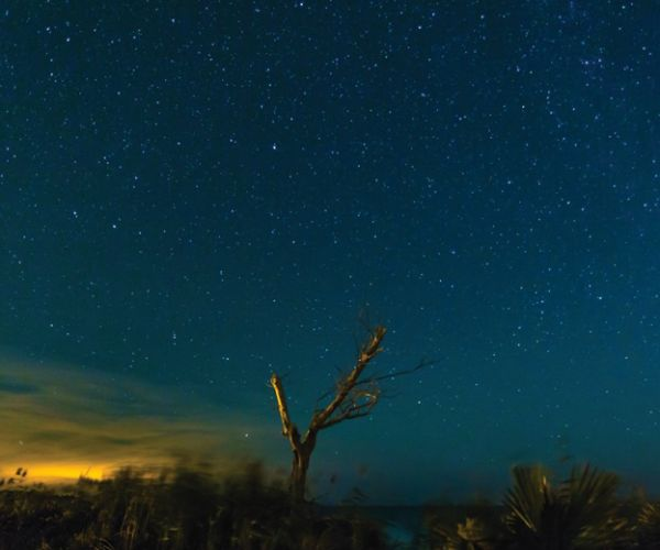 starry nights hatteras village outer banks events