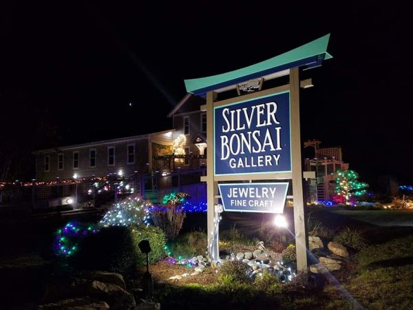 Annual Lighting Of The Bonsai Silver Bonsai Gallery Outer Banks Events